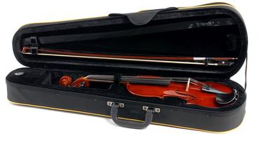 Gewa Violin Outfit Allegro 4/4