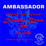 Ambassador Double Bass Strings
