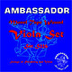 Ambassador Viola Monel Wound Strings